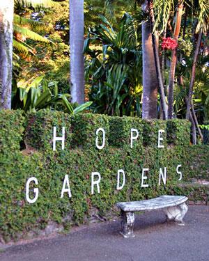 hope-garden